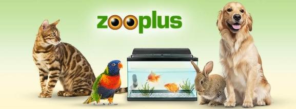 zooplus honden katten knaagdieren aquarium vogels paarden