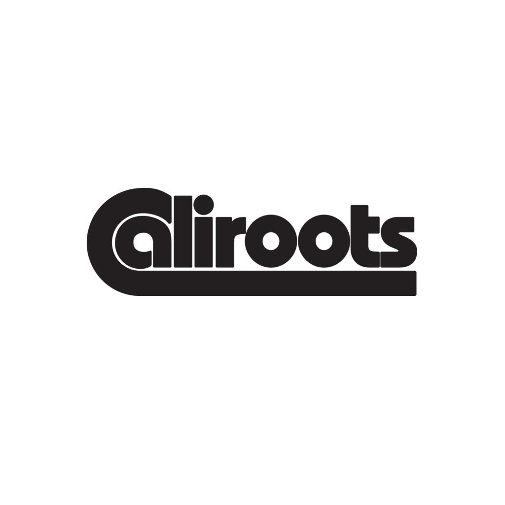 Met code 20% extra korting op sale sneakers @ Caliroots