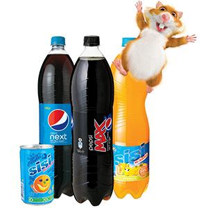 Tweede fles Pepsi of Sisi gratis @ AH