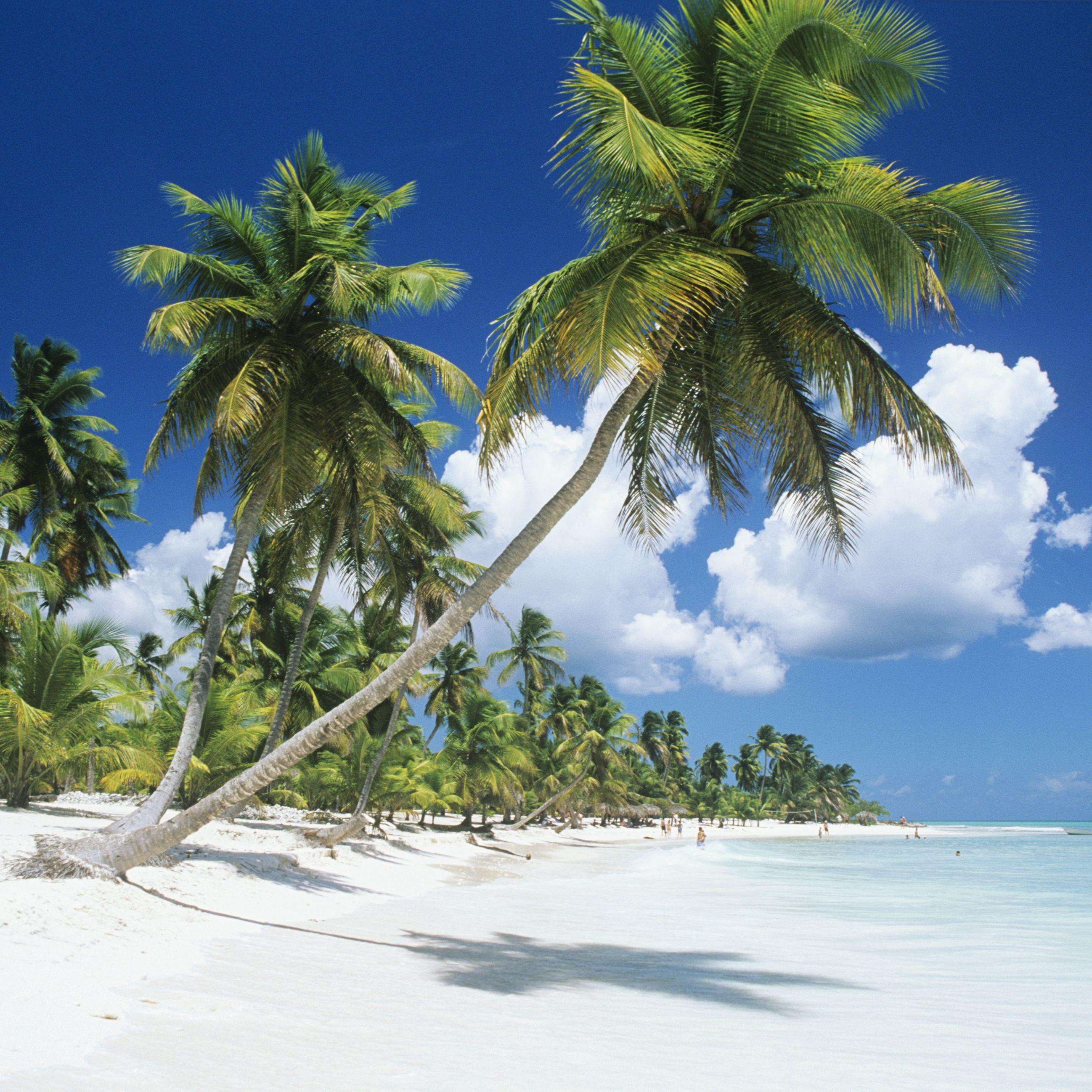 Vliegtickets: Brussel naar de Dominicaanse Republiek voor €276 @ Tui