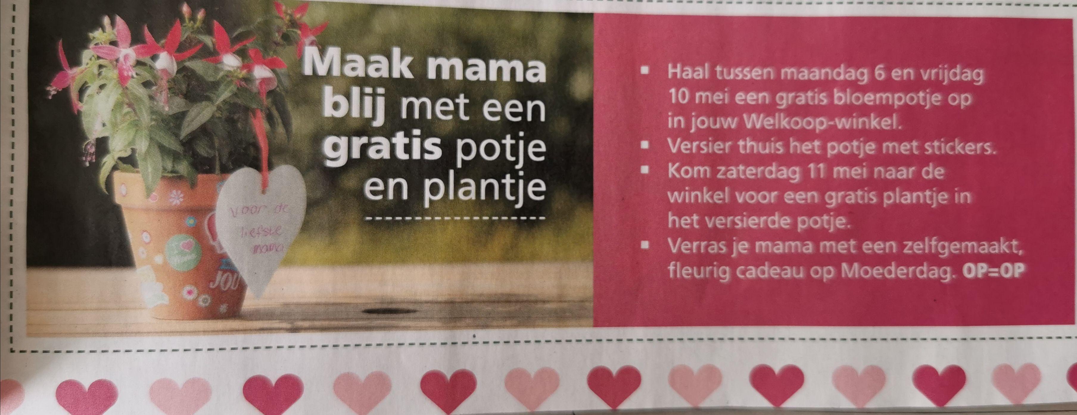 Maak mama blij met een gratis potje en plantje @ Welkoop