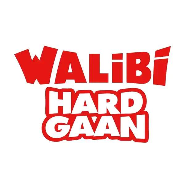Walibi Holland ticket
