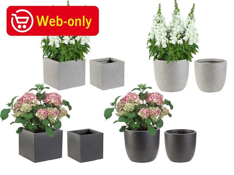 FLORABEST® Plantenpottenset Set van 2 plantenpotten voor de mooiste bloemen en planten
