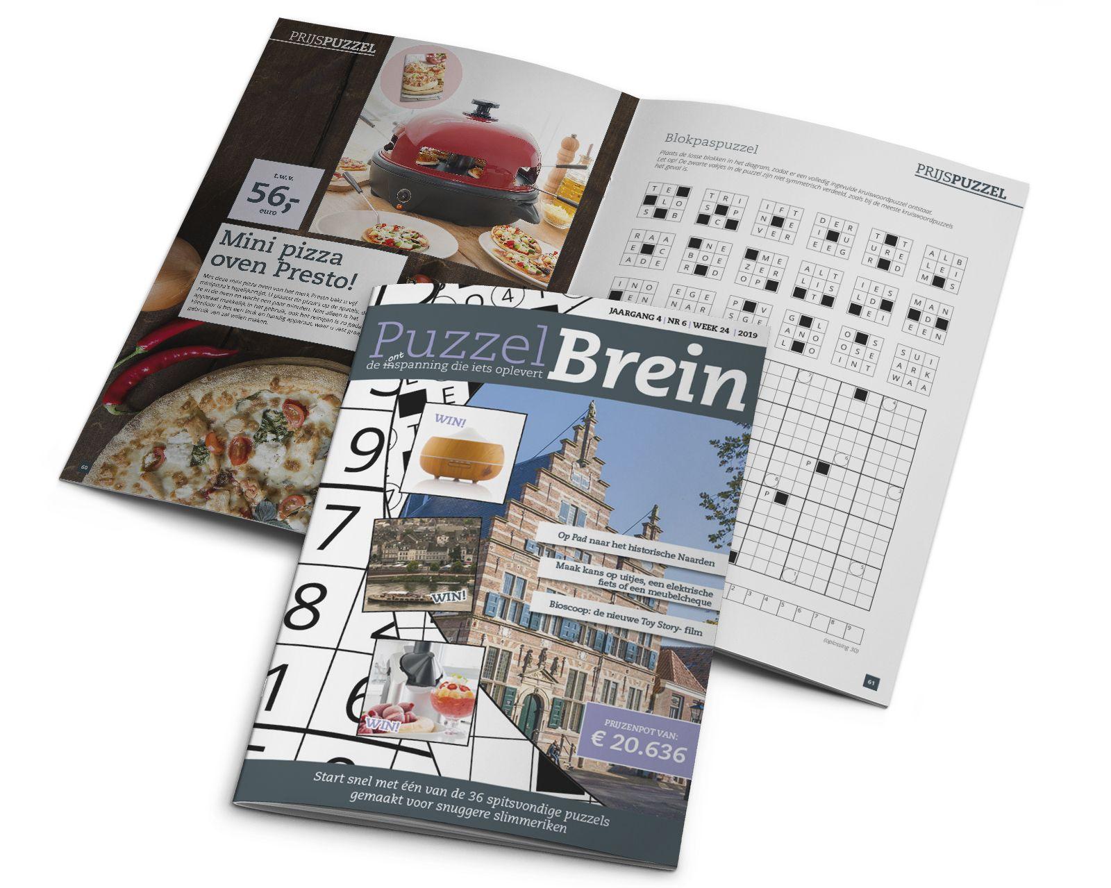 Gratis puzzelbrein boek twv €11.60