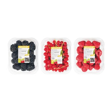 Hollandse frambozen, bramen en rode bessen 3 voor 4,50
