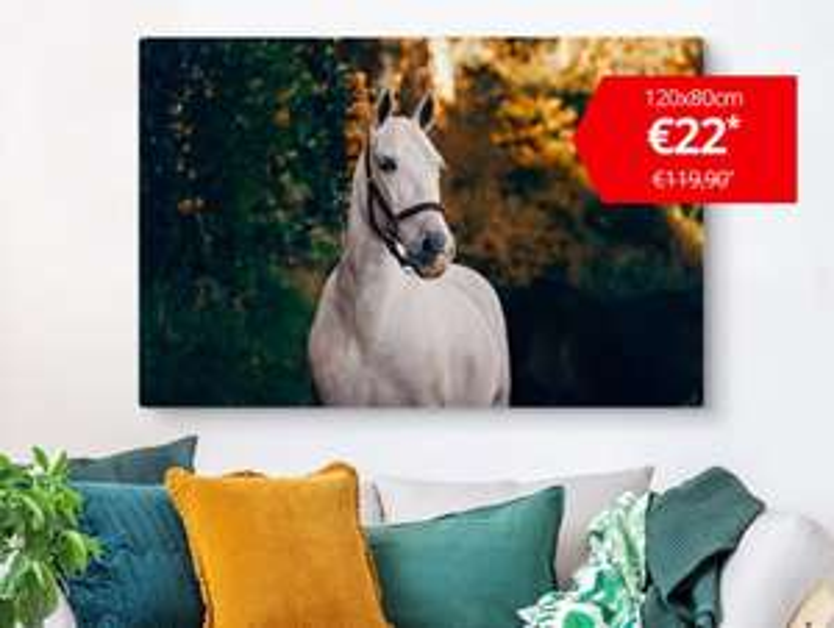 ACTIE: XXL Canvas 120x80 cm €22 @ Bestecanvas.nl