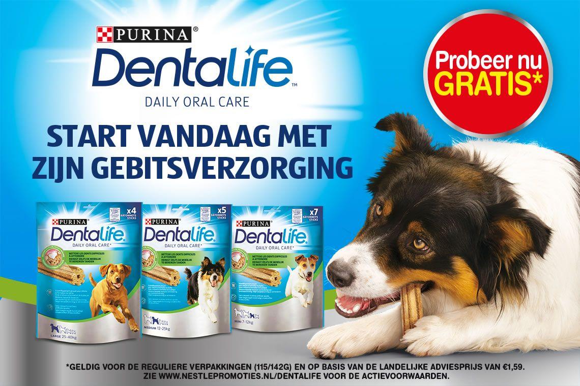 Gratis pakje dentalife-botjes