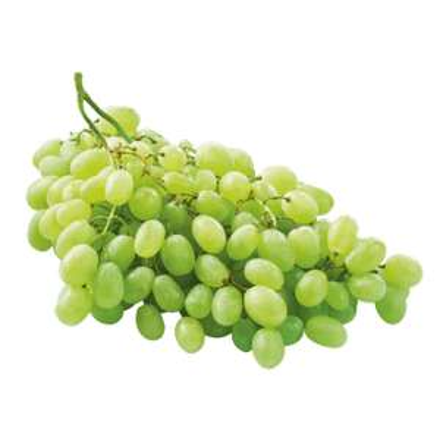 Witte druiven met pit 100% vers. 1 Kilo