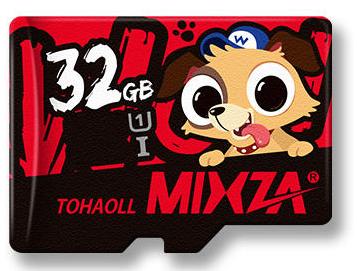 32GB TF Memory Card + Memory Card Storage Box (china)