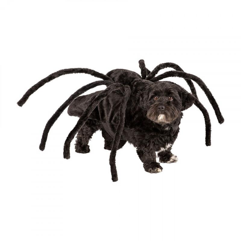 Haha-Halloween honden spinnen outfit @ Xenos