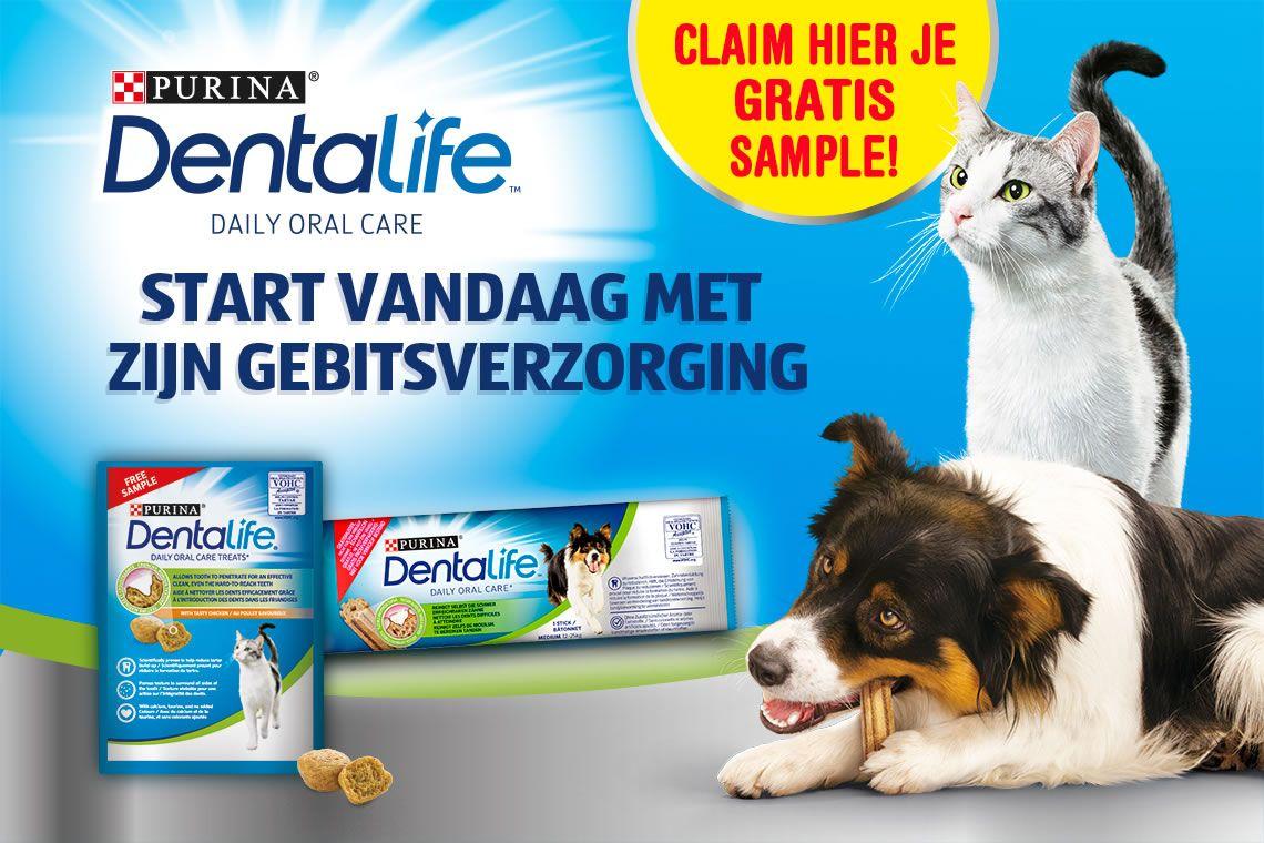 Gratis sample Dentalife voor hond of kat