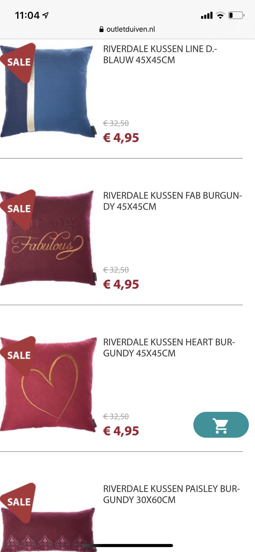 Riverdale kussens voor €4,95