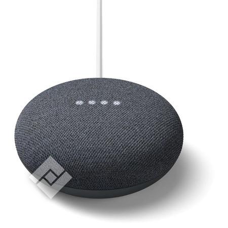 Google nest Mini Vanden borre Belgie