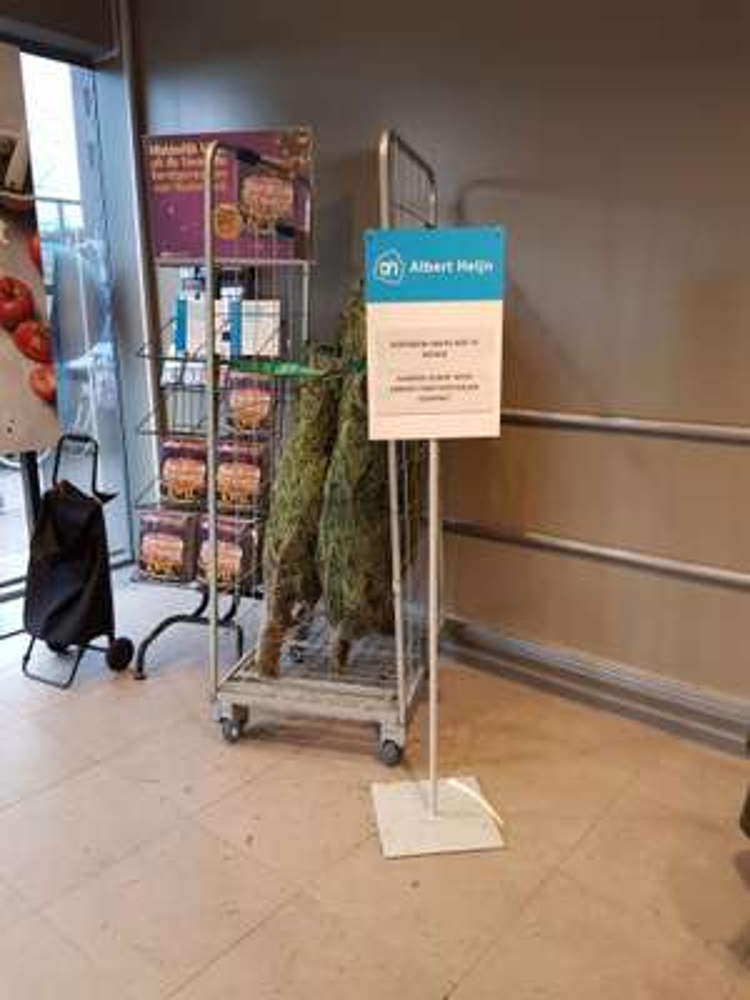 Kerstbomen gratis bij de Albert heijn Emmen