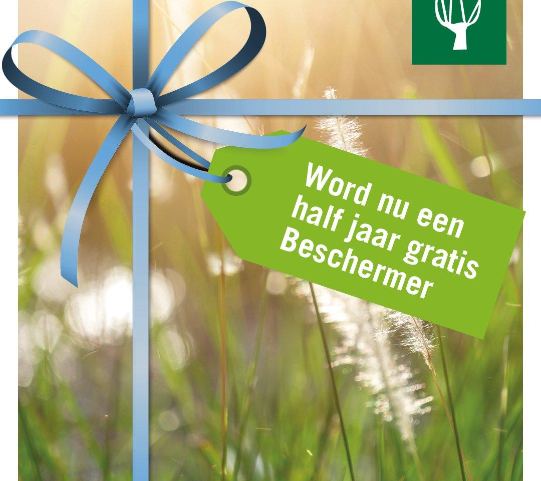 Zuid-Hollands landschap; Twee keer tijdschrift, eigen Beschermerspasje, 40% korting op excursies