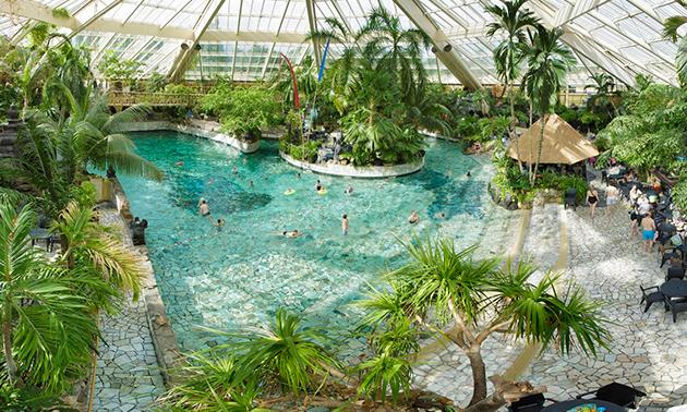 Dagentree subtropisch zwemparadijs Aqua Mundo Eemhof