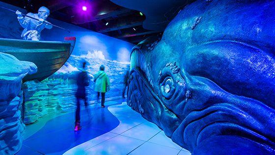 Gratis naar het scheepvaart museum, voor kinderen van 4 t/m 17 jaar oud en begeleider op 30 en 31 januari