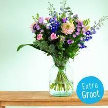 Gratis bezorgen op bloemen & planten Greetz