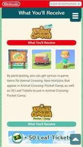 Animal Crossing: New Horizons Special Item Order Ticket