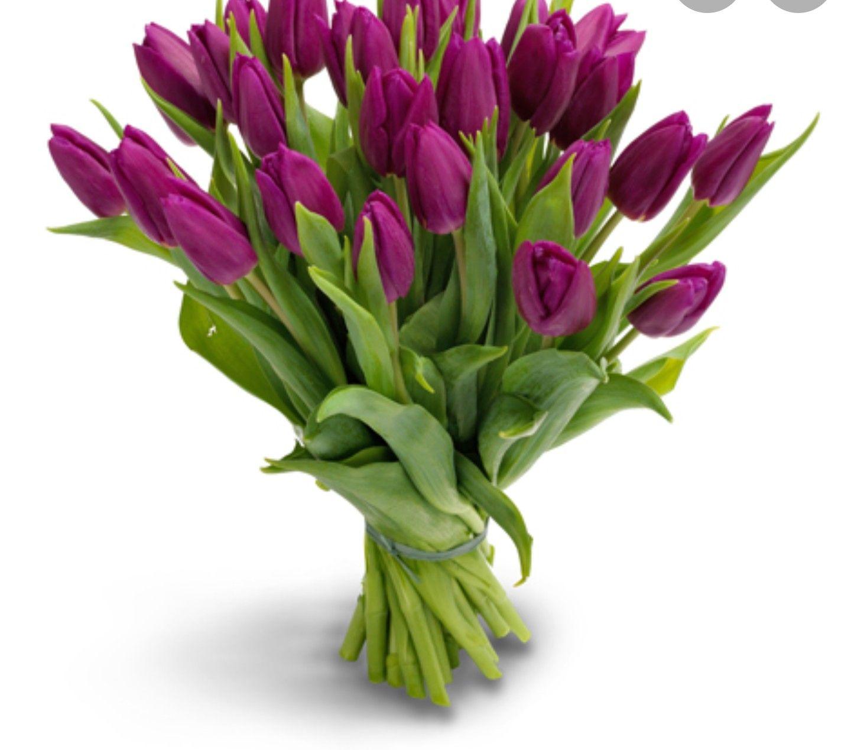 (Lokaal Deventer) tulpen actie voor goed doel!