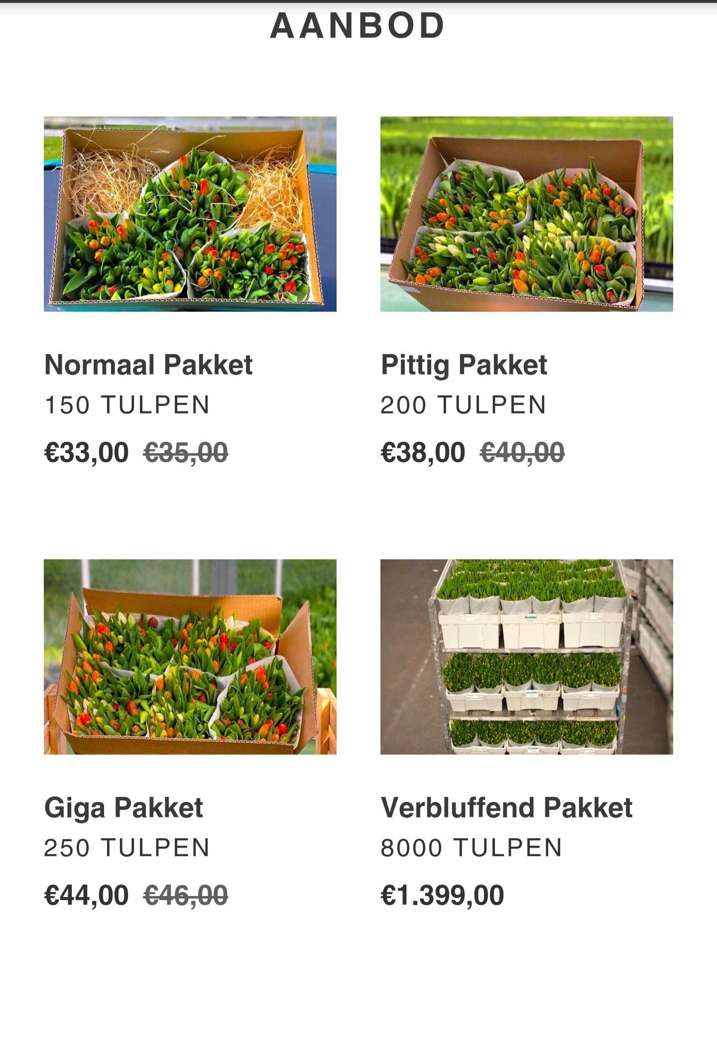 150, 200 of 250 tulpen tegen inkoopprijs. Help de kwekers.