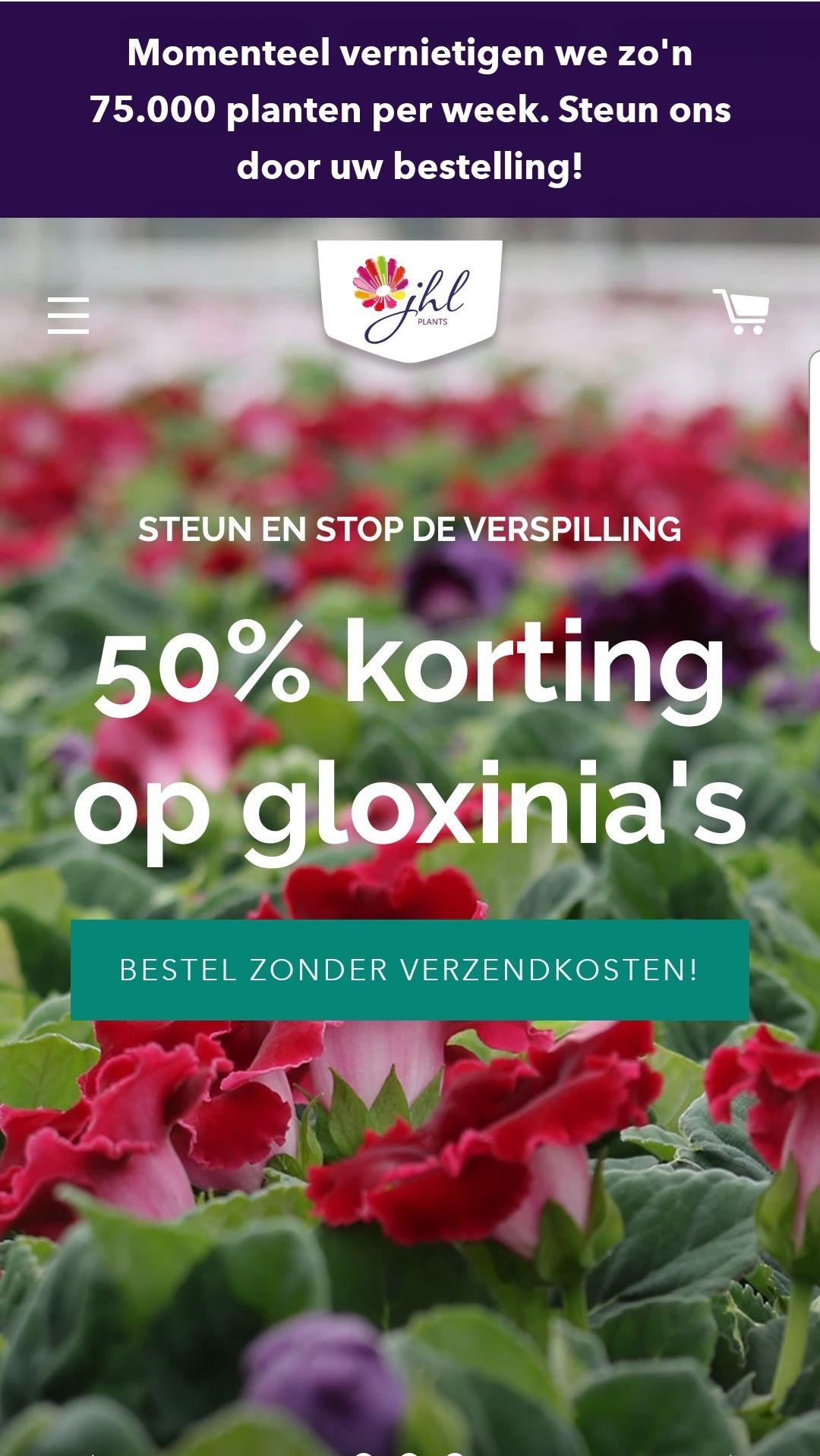 50% korting op gloxinia's (planten)