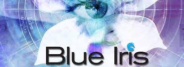 Goedkoopste nieuwste Blue Iris V5 camera beveiliging software @ Amcrest