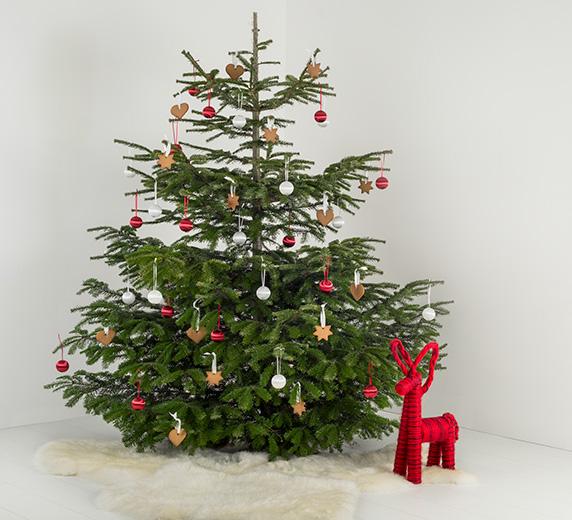 Een kerstboom voor 1 euro @ Ikea