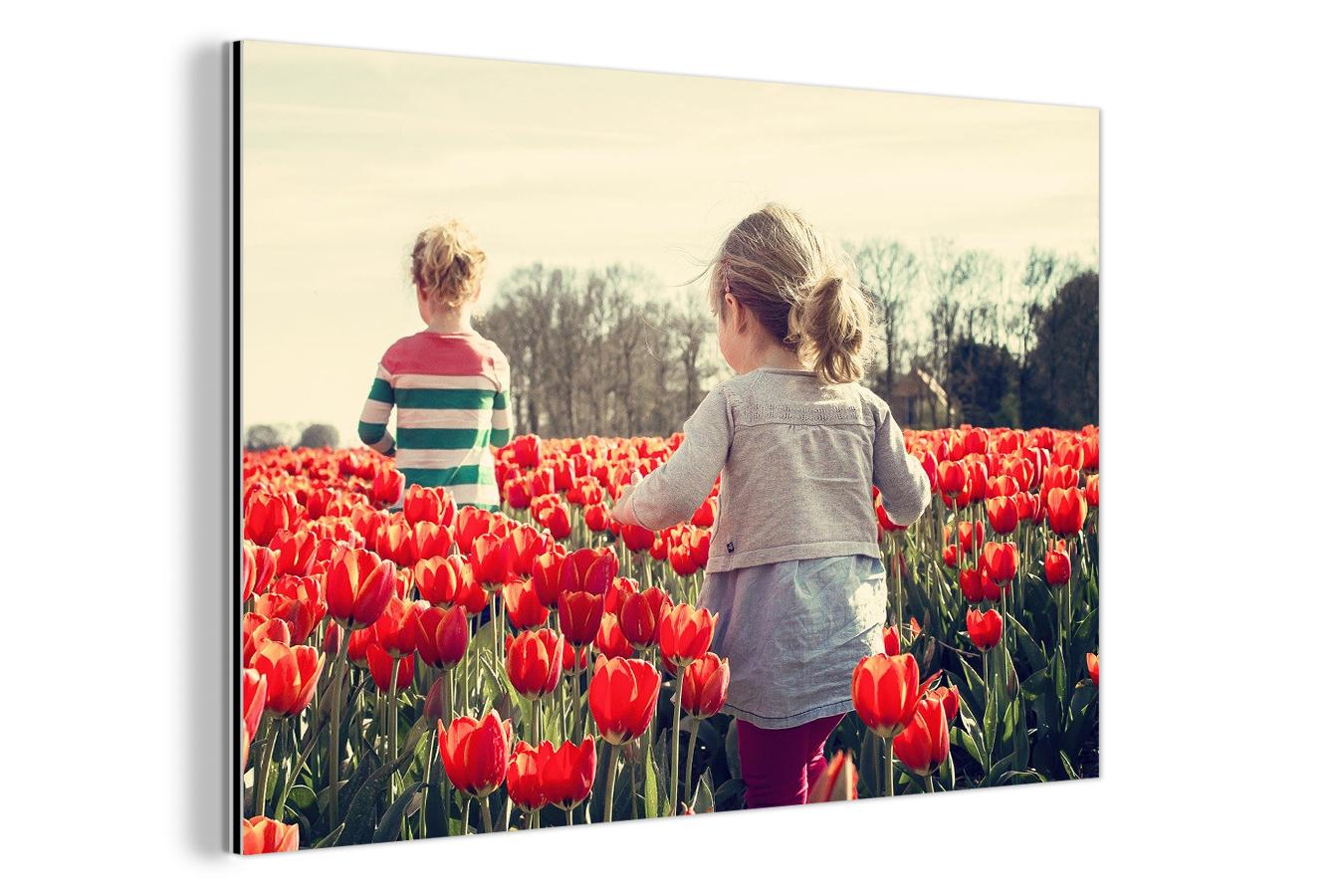 68% korting op standaardprijs eigen foto op aluminium - v.a. €3,12