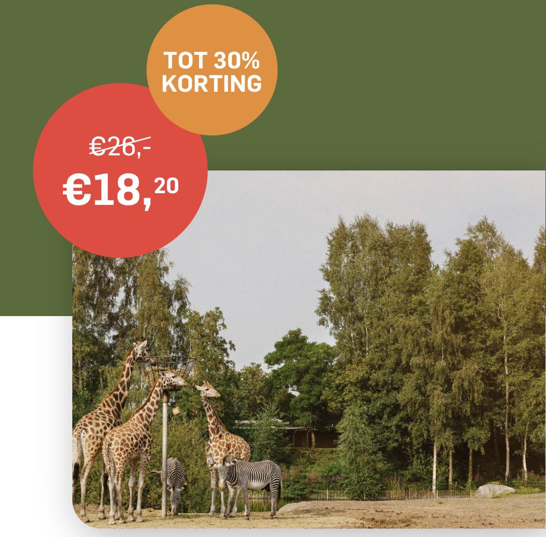 Safaripark Beekse Bergen - korting via uitjes krant.nl
