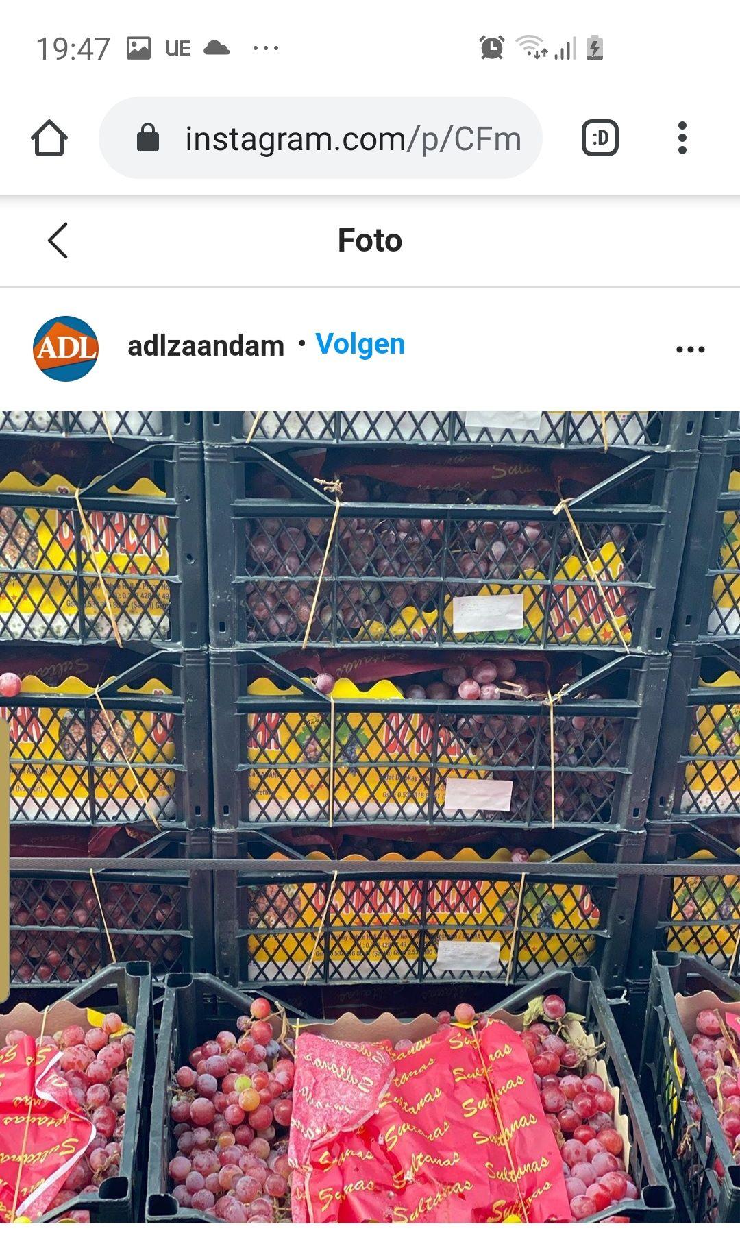 Lokaal Adl zaandam supermarkt 10 kilo druiven 1.99