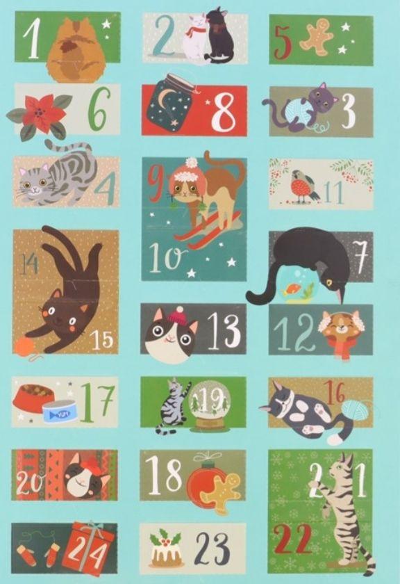 Adventskalender voor je lieve kat! @Action