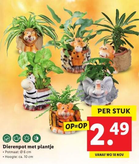Dierenpotjes met planten erin €2,49 Lidl - (vanaf) 18 november