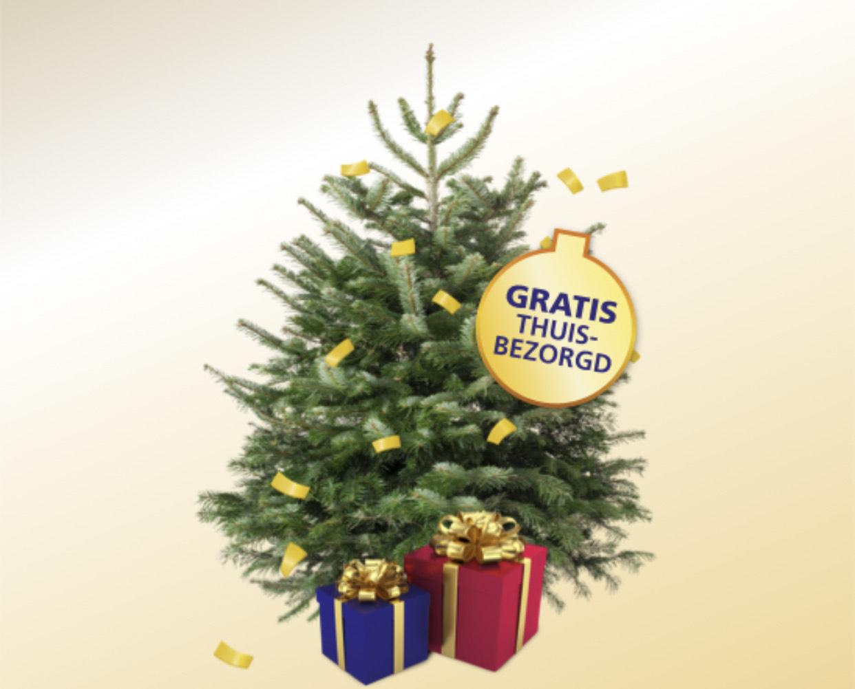 Gratis Nordmann Kerstboom bij de BankGiro Loterij
