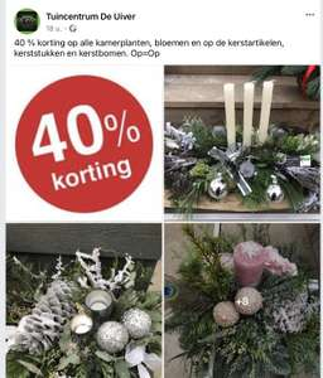 Lokaal Alle kerst en kamerplanten 40% korting. Profiteer vandaag nog.