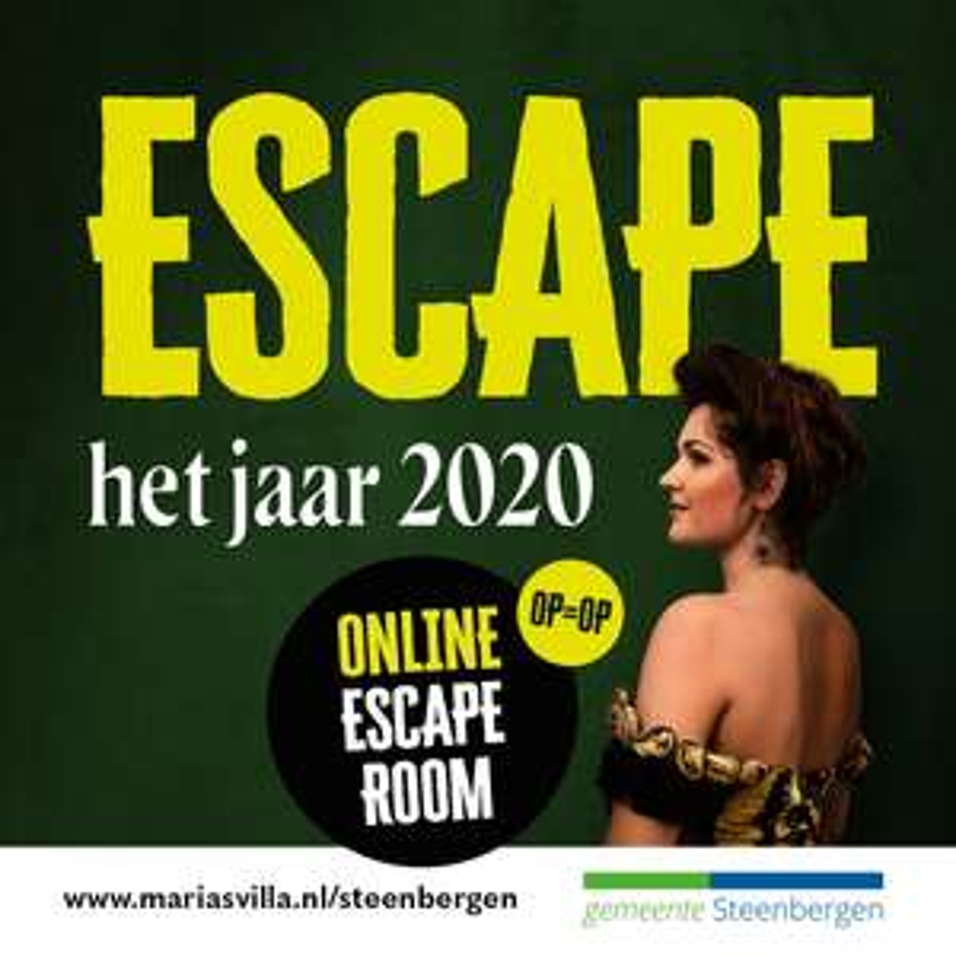 [LOKAAL] Gratis online escape room voor Steenbergse jeugd