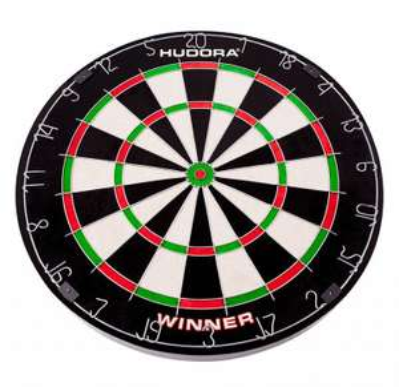 Professioneel dartbord met 6 professionele dartpijlen.