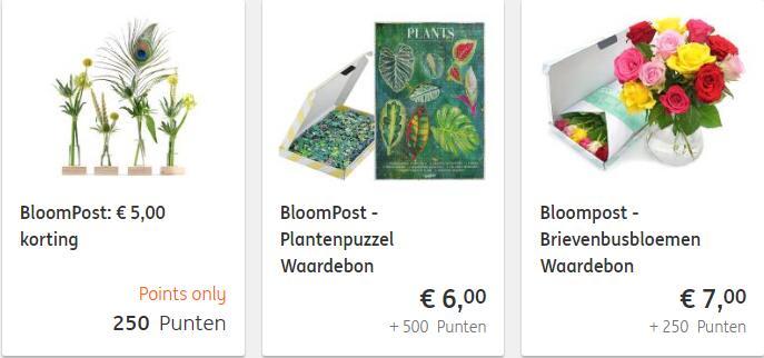 Korting op Bloompost producten via ING rentepunten