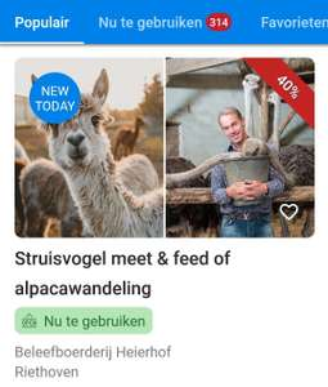Struisvogel meet & feed of Alpaca wandeling bij Beleefboerderij Heierhof (Riethoven) voor €17,95