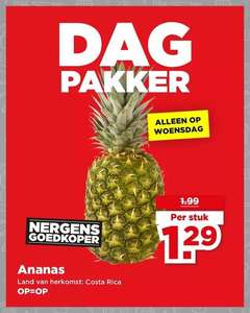 DagPakker Plus: Ananas €1,29 (35% korting)