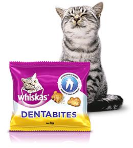 Gratis Dentabites