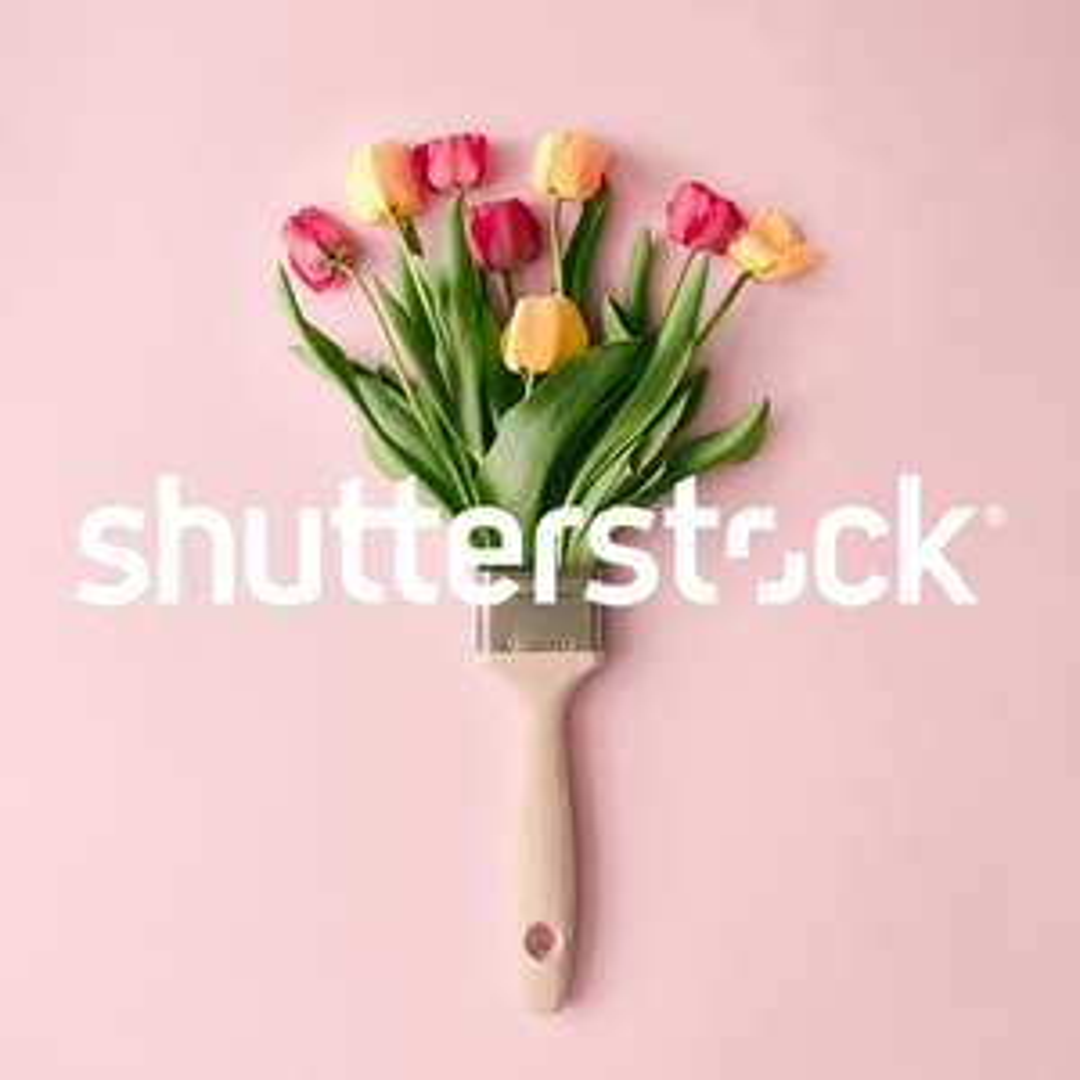 25% korting bij Shutterstock