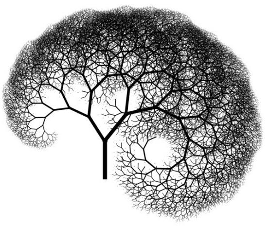 [LOKAAL] Inwoners kunnen gratis bomen en heesters bestellen bij Energiebos Boerakker [Boerakker en Lucaswolde]