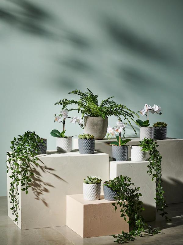 [Ikea] 20% korting op alle FEJKA kunstplanten