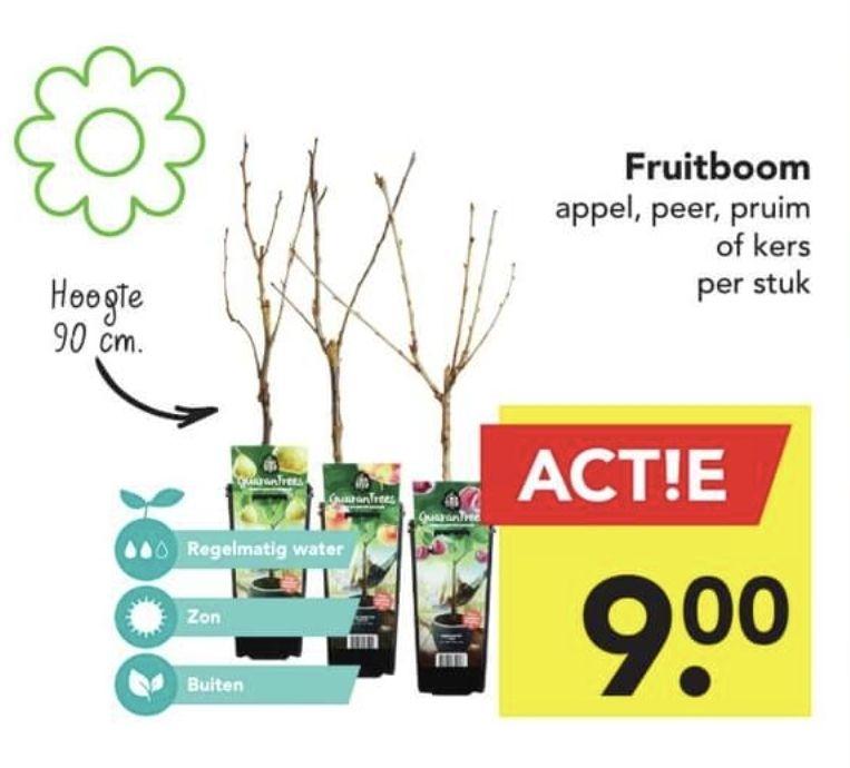 Fruitbomen bij Deen Supermarkt