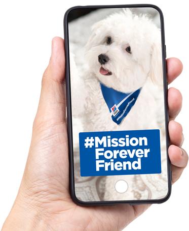 Zet je hond/kat op sociale media met #MissionForeverFriend en donneer een maaltijd aan een Asiel