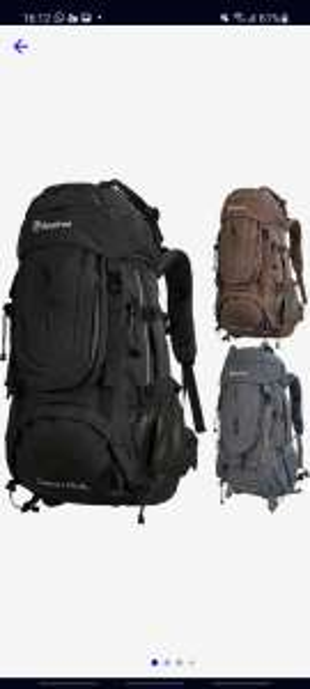 BeeFree 65+5L backpack | inclusief regenhoes