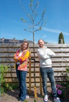 [LOKAAL] Gemeente deelt opnieuw 1000 gratis bomen uit [Amersfoort]