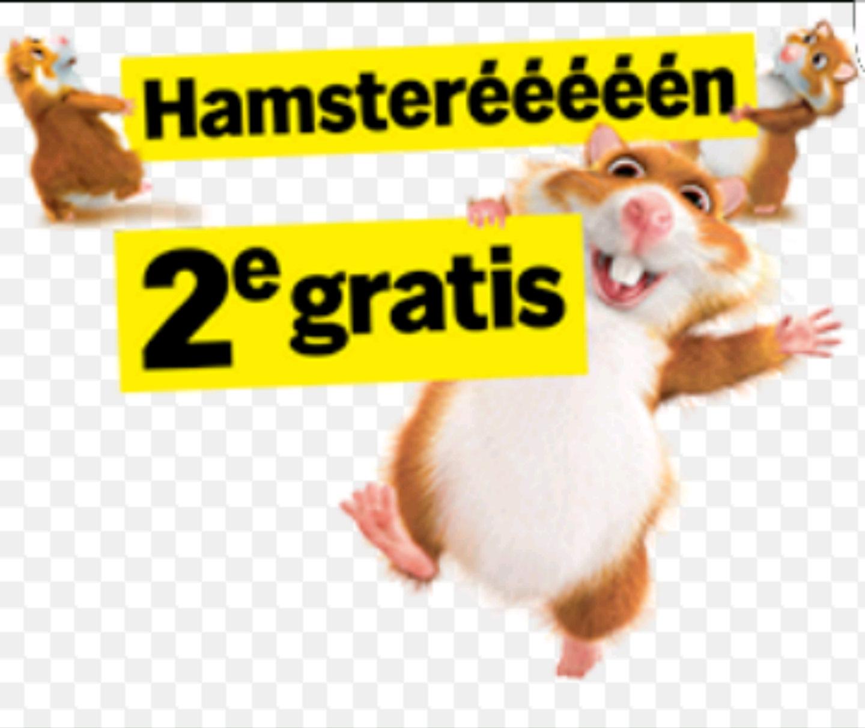 Hamsterweek bij Albert Heijn vanaf maandag, tweede gratis (ook i.c.m. 10 euro extra korting!)