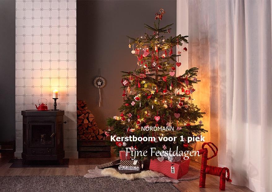 Nordmann kerstboom voor uiteindelijk €1 @ Ikea Winkels